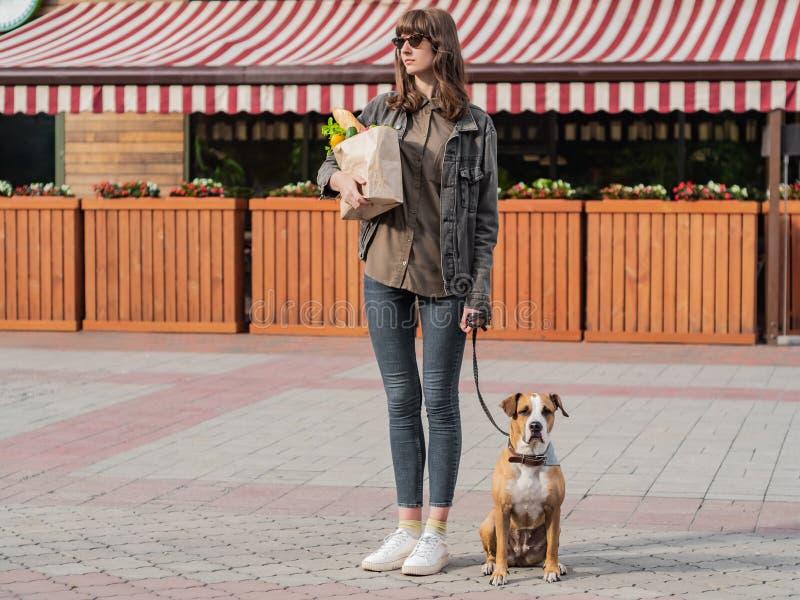 Junge hübsche Frau mit Hund hält Papiertüte Lebensmittelgeschäfte im fron lizenzfreie stockfotografie