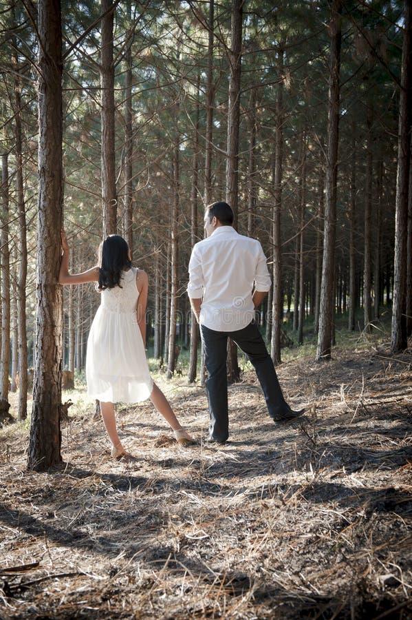 Junge hübsche indische Paare, die im Wald stehen stockfotografie