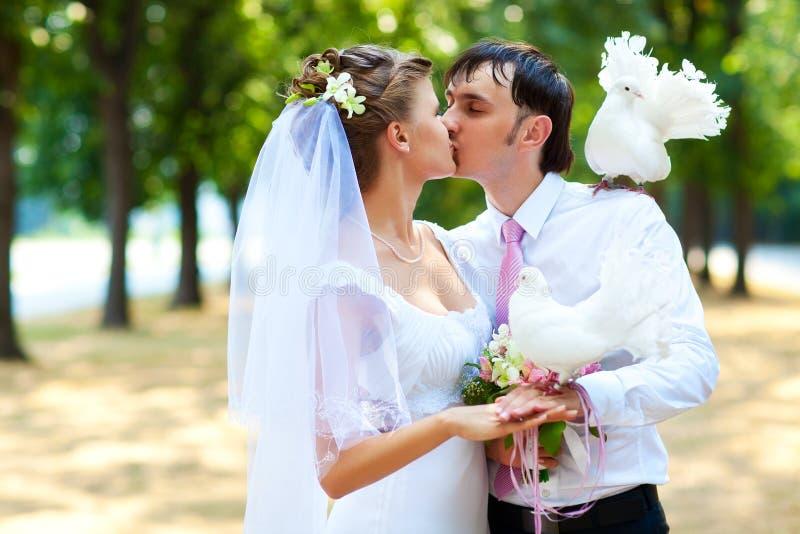Junge Hochzeitspaare stockfotografie