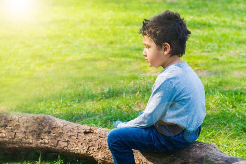 Junge 4 Jahre alte Sitzen allein auf einem Klotz lizenzfreie stockfotos