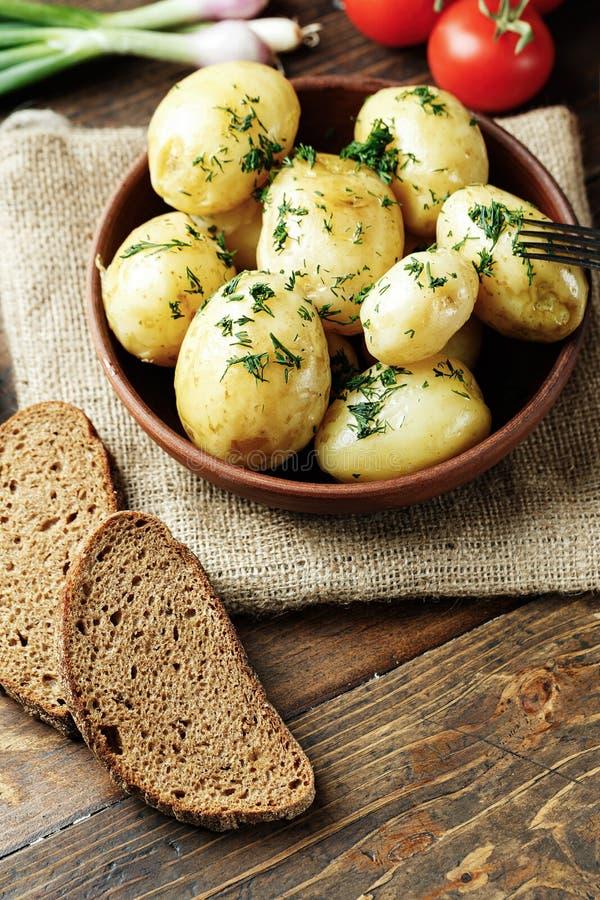 Junge Kartoffel des Mittagessens mit Dill lizenzfreie stockfotografie