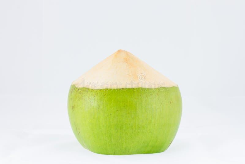 Junge Kokosnussfrucht auf weißem Hintergrund stockfoto