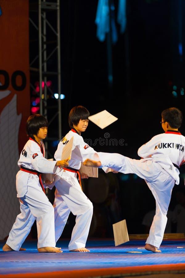 Junge koreanische Jungentaekwondo-tretende Demonstration stockfotografie