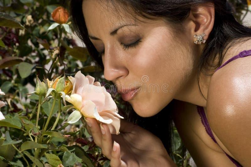 Junge Latino-Frau und Garten Rose stockfotos