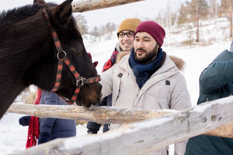 Junge Leute, die Pferde auf Ranch streicheln lizenzfreies stockfoto