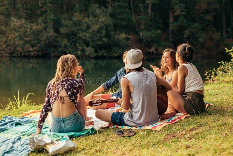 Junge Leute, die Picknick nahe einem See haben lizenzfreie stockfotos