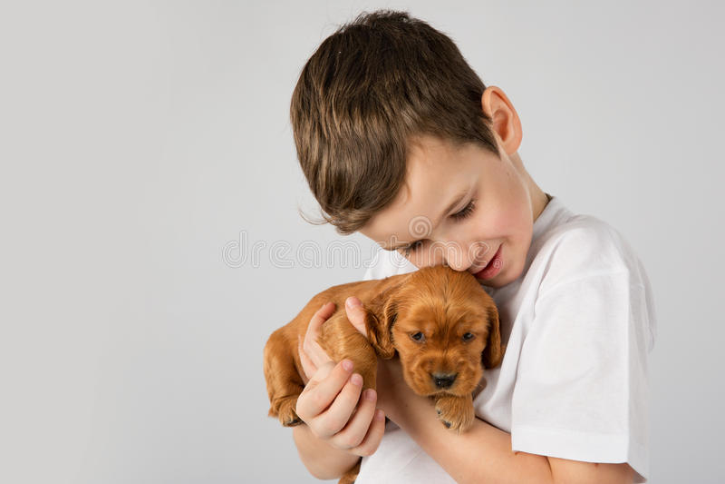 Junge mit dem roten Welpen lokalisiert auf weißem Hintergrund Kinderhaustier-Freundschaft stockfotografie
