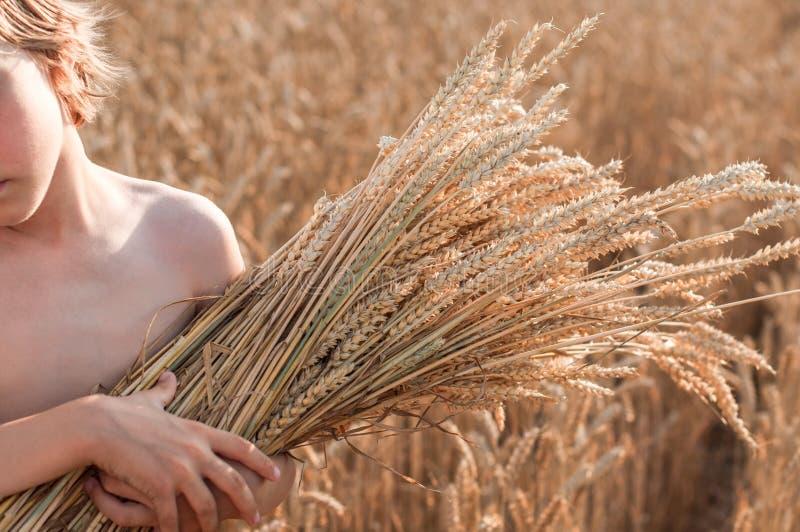 Junge mit den Kornähren auf dem Gebiet des Getreides stockfotografie