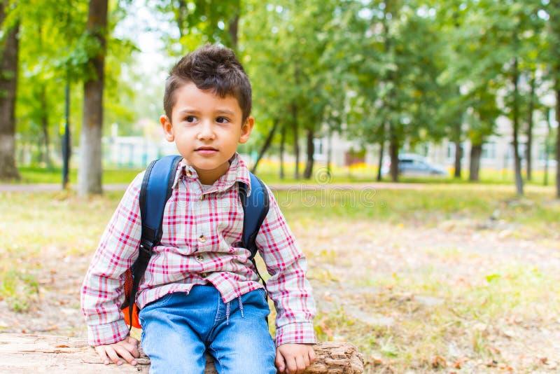 Junge mit einem Rucksack, der auf einem LOGON das Holz sitzt lizenzfreies stockfoto
