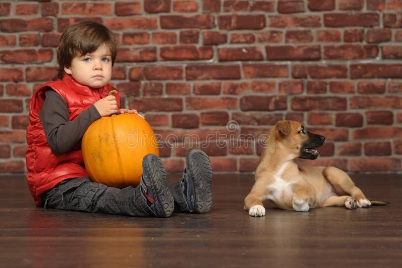 Download Junge mit einem Welpen stockfoto. Bild von adorable, freunde - 27731926