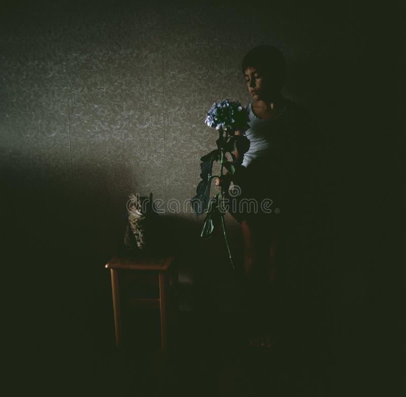 Junge mit einer lila Blume eine Blume und eine Katze lizenzfreie stockfotos