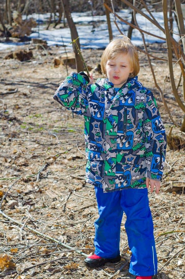 Junge mit einer Niederlassung in den Händen stockfotos