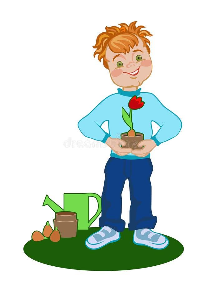 Junge mit gewachsener Tulpe stock abbildung