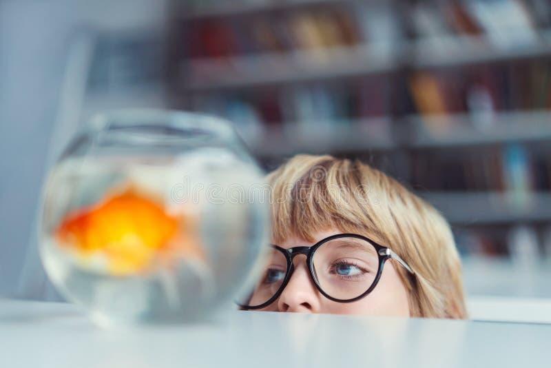 Junge mit Goldfisch stockbilder