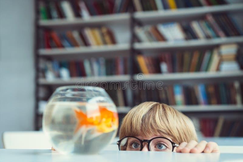 Junge mit Goldfisch lizenzfreie stockbilder