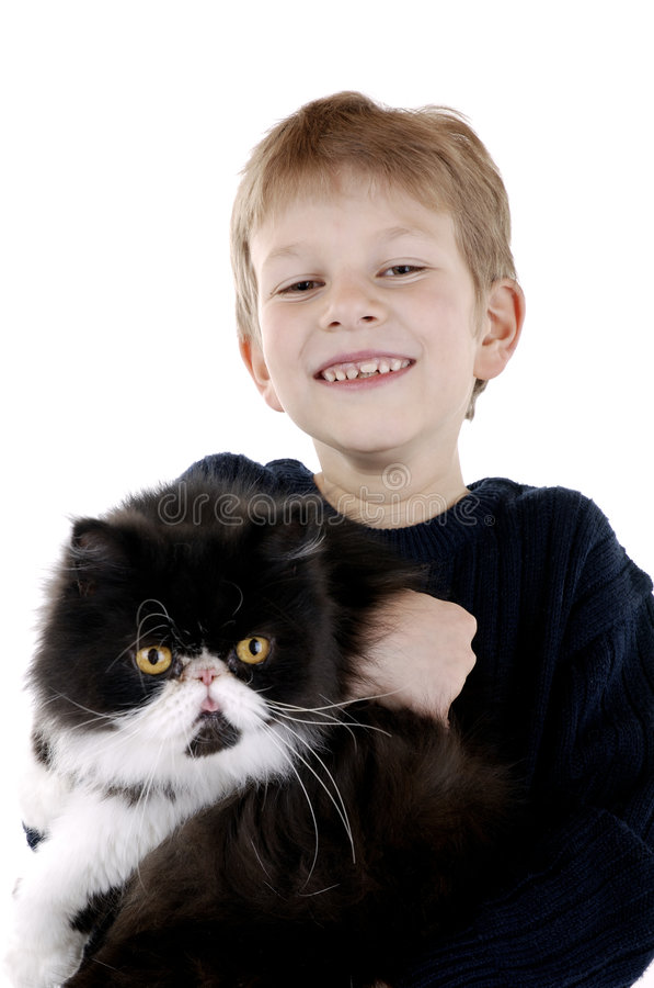 Junge mit persischer Katze lizenzfreie stockfotos