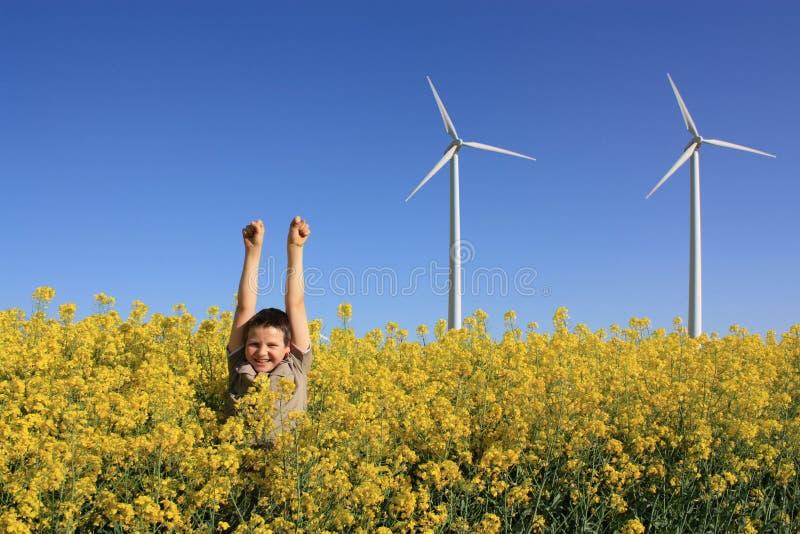 Download Junge mit Pinwheels stockfoto. Bild von canola, klima - 26364900