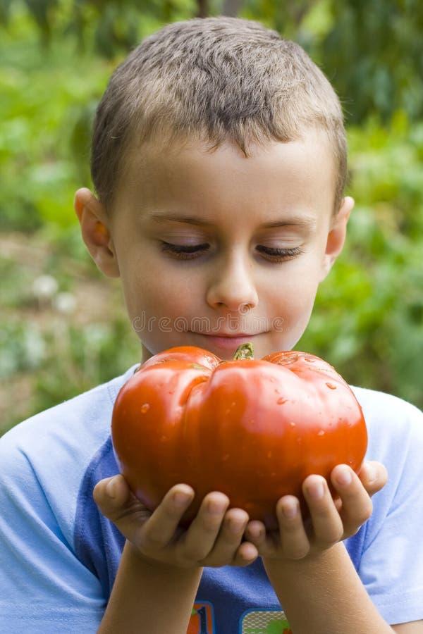 Junge mit riesiger Tomate lizenzfreie stockfotos