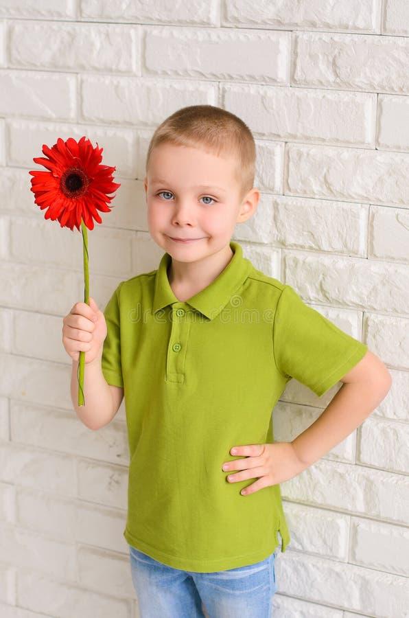 Junge mit rotem Gerbera stockfoto