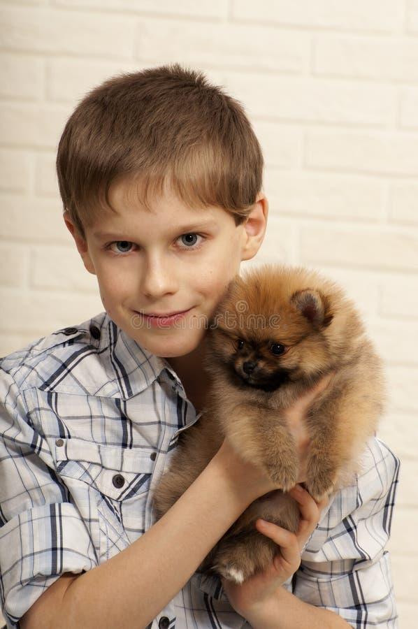 Junge mit Welpen. lizenzfreie stockbilder