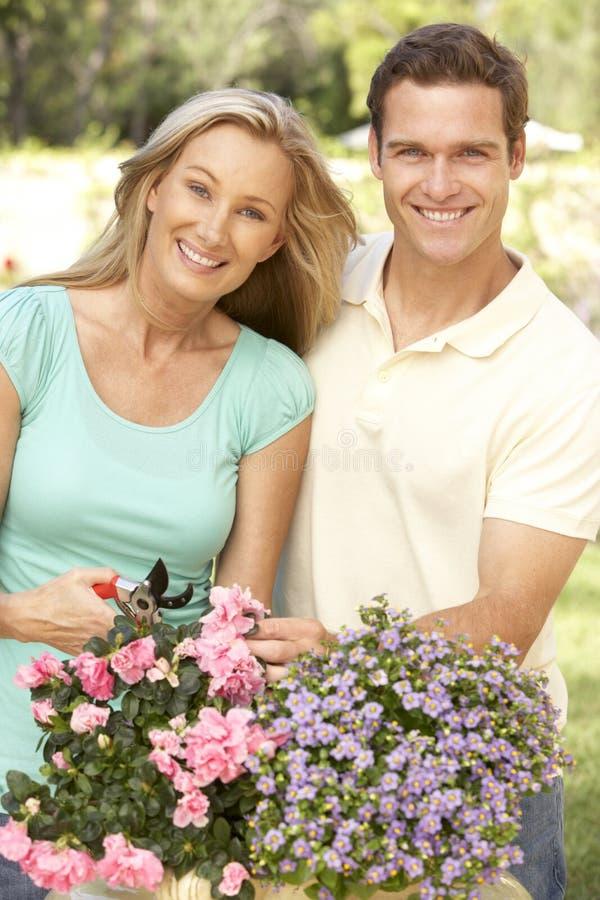 Junge Paar-Gartenarbeit stockfotos