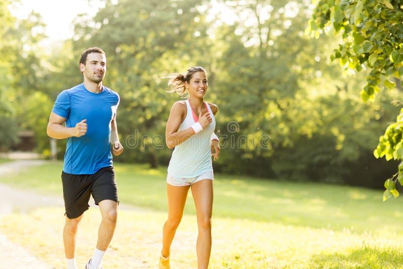 Junge Paare, die oben auf einen Hügel laufen lizenzfreie stockbilder