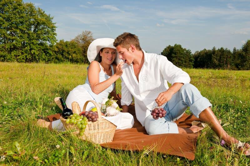 Junge Paare, die Picknick in der Wiese haben lizenzfreie stockfotografie