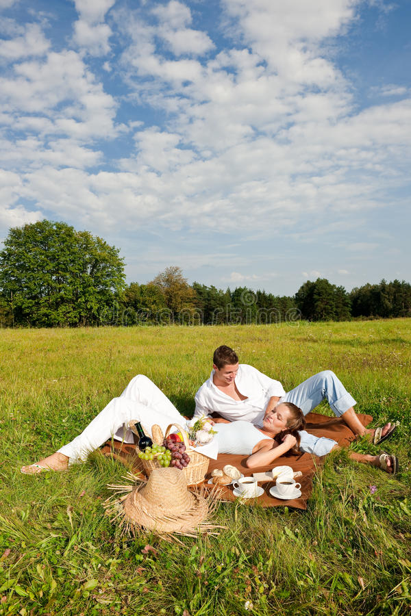 Junge Paare, die Picknick in der Wiese haben stockbilder