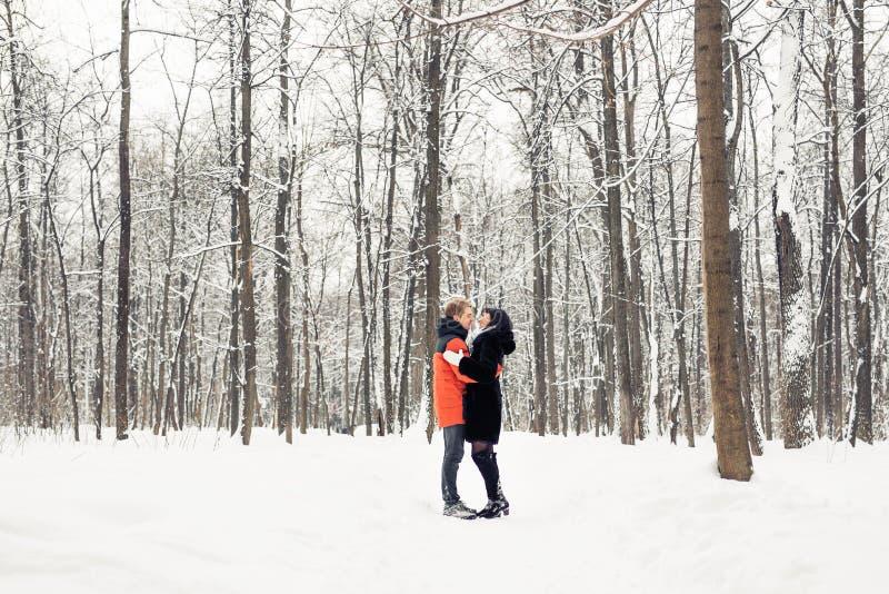 Junge Paare, die am Wintertag küssen stockfotografie