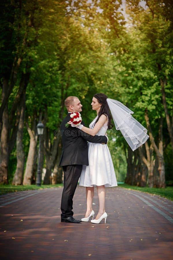 Junge Paare, die zusammen eigenhändig Hand in Sommerpark gehen lizenzfreie stockfotografie