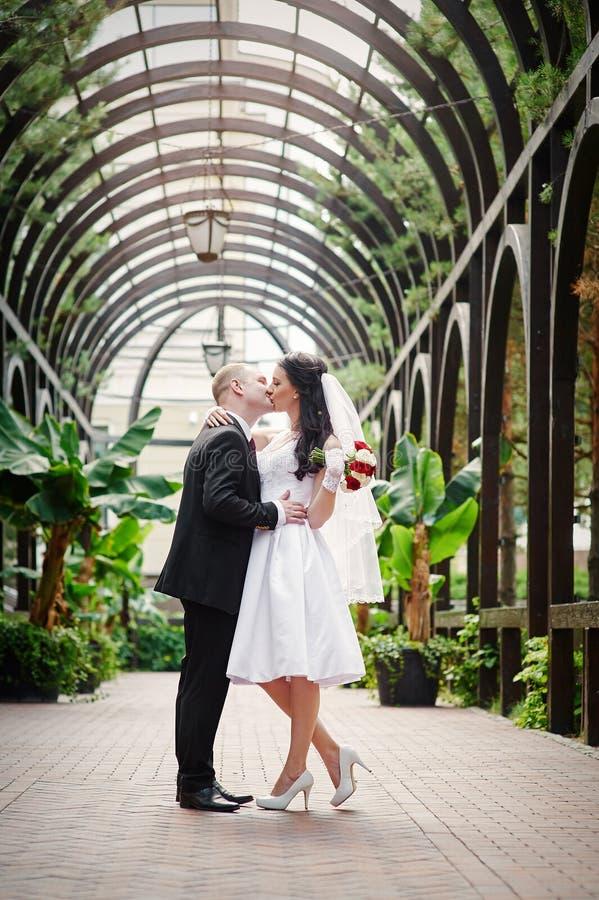 Junge Paare, die zusammen eigenhändig Hand in Sommerpark gehen lizenzfreies stockbild