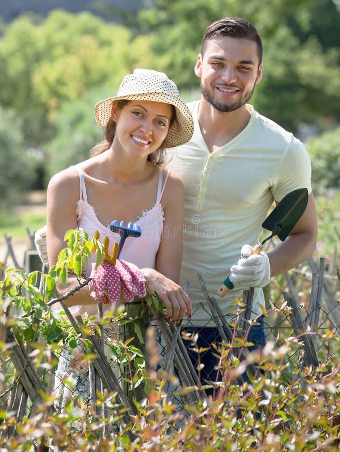 Junge Paare, die zusammen im Garten arbeiten stockfotos