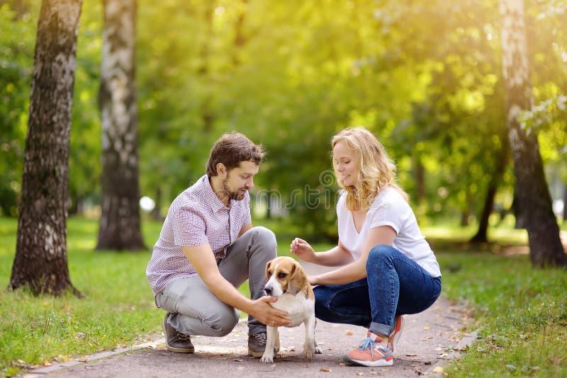 Junge Paare mit Spürhundhund in einem sonnigen Sommerpark lizenzfreie stockfotos