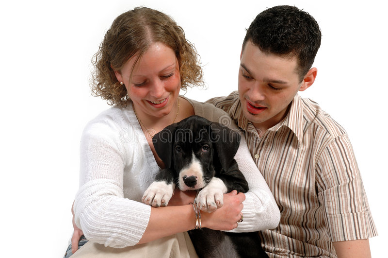 Junge Paare und Welpe stockfotos