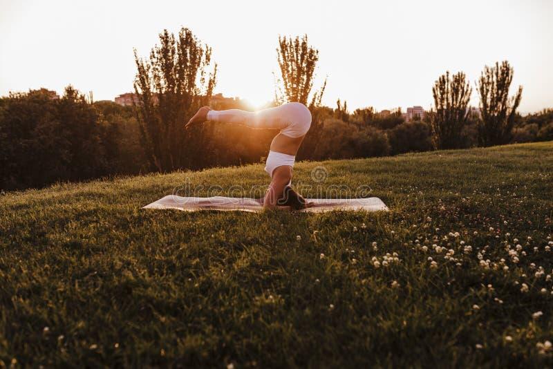 junge schöne asiatische Frau, die Yoga in einem Park bei Sonnenuntergang tut Yoga und gesundes Lebensstilkonzept lizenzfreies stockbild