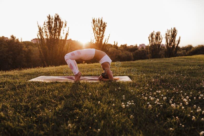 junge schöne asiatische Frau, die Yoga in einem Park bei Sonnenuntergang tut Yoga und gesundes Lebensstilkonzept lizenzfreies stockfoto
