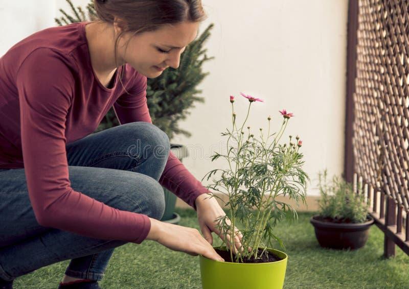Junge schöne Frau, die Blumen auf ihrem Balkon pflanzt stockfoto
