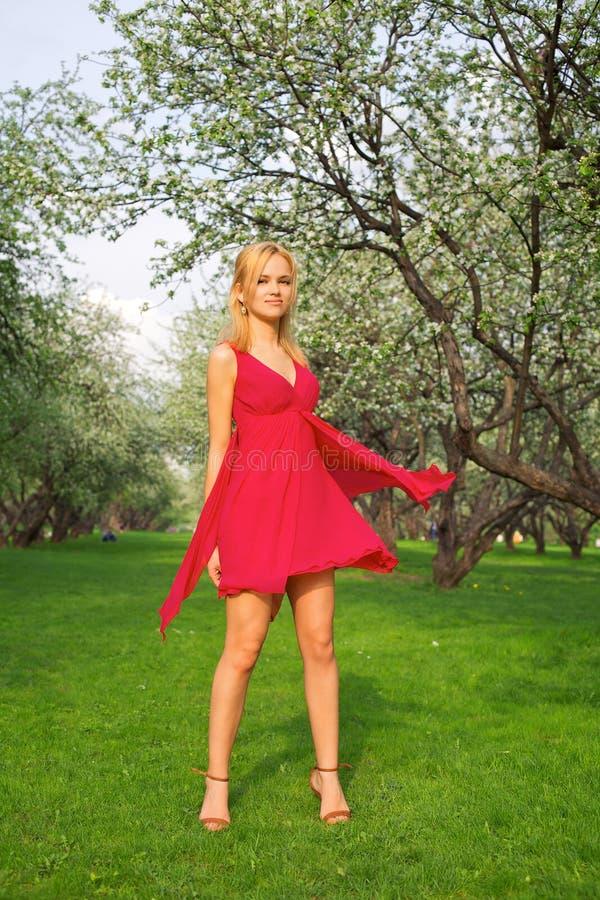 Junge schöne Frau in einem roten Kleid lizenzfreie stockfotografie