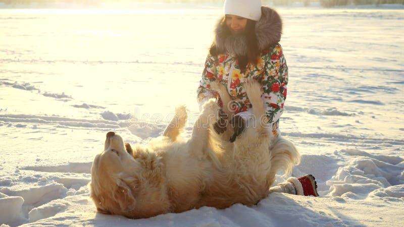 Junge schöne glückliche Frau spielt mit einem Retrieverhund im Schnee im Winter am sonnigen Tag während der Sonnenuntergangzeit stockbilder