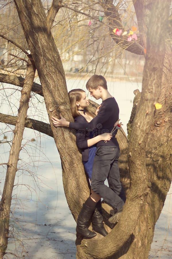 Junge schöne Paare, die gegen den Baum umarmen stockfotografie