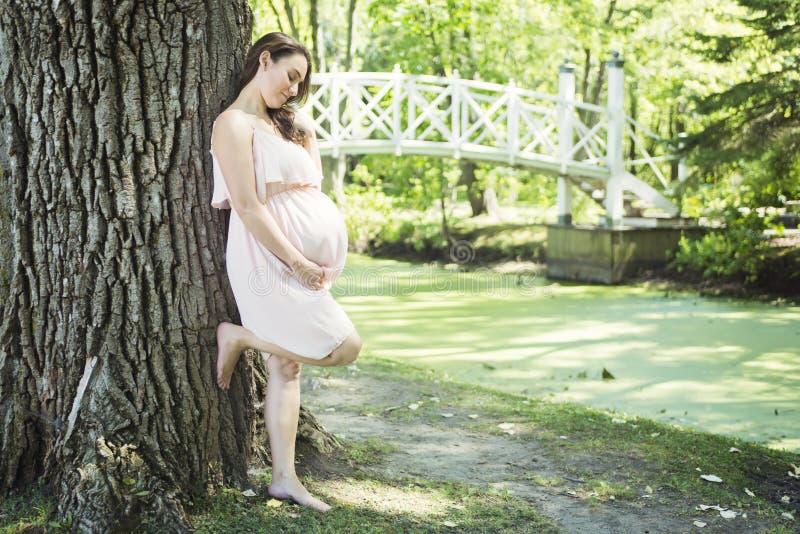 Junge schöne schwangere Frau mit dem langen Haar lizenzfreies stockfoto