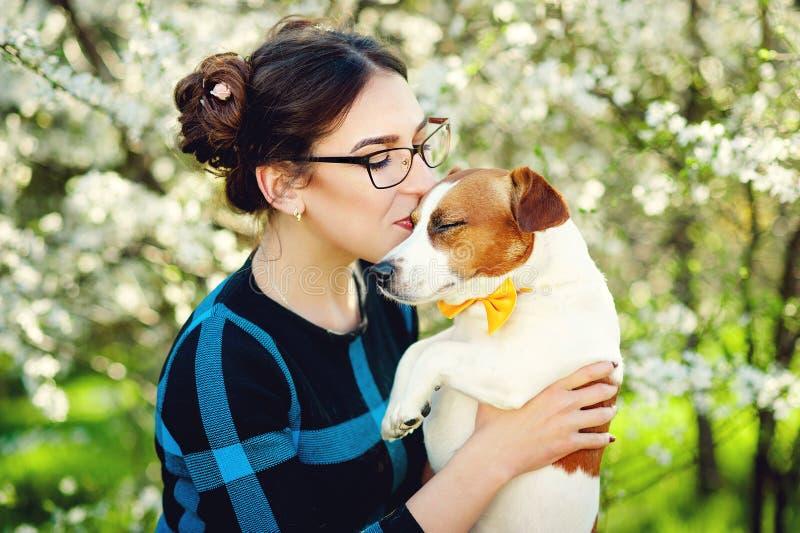 Junge Schönheit küsst ihren geliebten Schoßhund Jack Russell-Terrier auf einem Hintergrund von blühenden Bäumen des Frühlinges lizenzfreie stockfotos