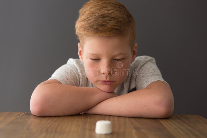 Junge sitzt an einem Tisch herüber von einem einzelnen Eibisch lizenzfreies stockbild