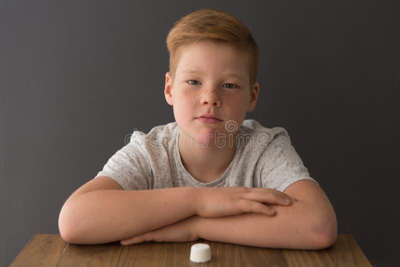 Junge sitzt an einem Tisch herüber von einem einzelnen Eibisch stockfotos