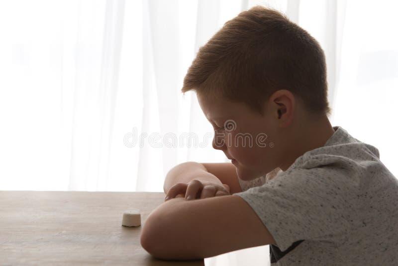 Junge sitzt an einem Tisch herüber von einem einzelnen Eibisch stockbilder