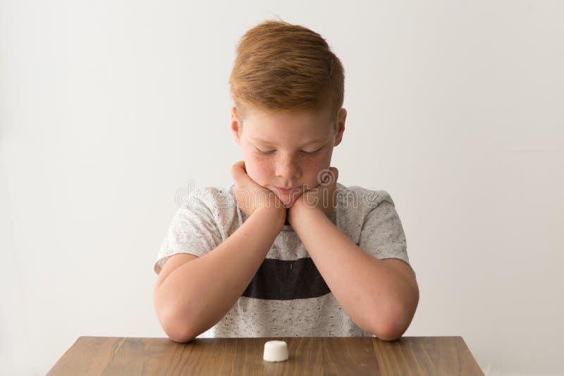 Junge sitzt an einem Tisch herüber von einem einzelnen Eibisch stockfoto