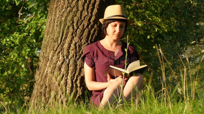 Junge Studentin, die ein Buch im Park liest Kultur, Lesung, Bildung Mädchen, das durch den Baum sitzt Kamerabewegung lizenzfreies stockbild