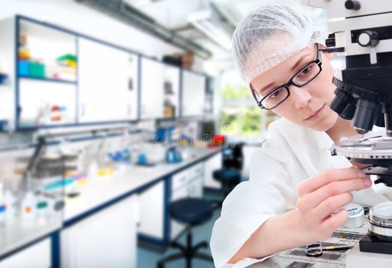 Junge Technologie justiert ihr Mikroskop lizenzfreie stockbilder