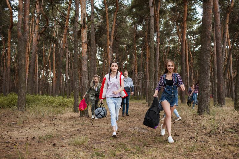 Junge touristische Gruppe, die zusammen Waldkonzept wandert stockfoto