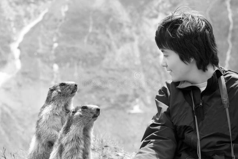 Junge und Eichhörnchen - das Vertrauen stockfoto